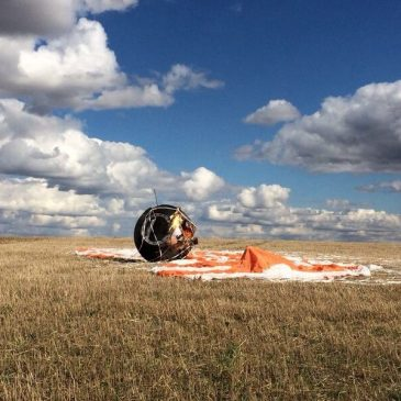 Грустные новости про гекконов-космонавтов